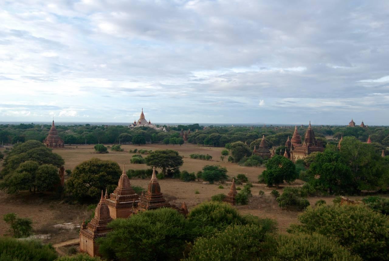 Utsikt över tempelområdet i Bagan